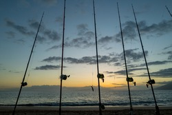 Fishing rods held in fishing rod holders. The rods are bent from the weight of the down riggers. Trolling for salmon of the coast.