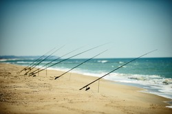 Fishing rods set up on beach shore at sunny day