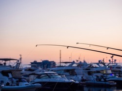 Fishing rods with lines thrown into the sea against a blurred background of yachts and a pinkish sky