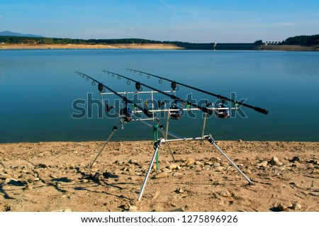 Fishing rods with reels on a support system rod pod. Carp fishing rods. #1275896926
