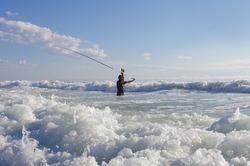 Fishing scene. Surf fisherman into the waves. Atlantic ocean