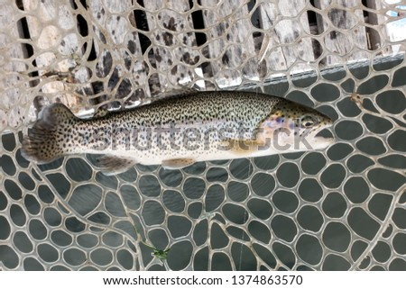 Fishing sport recreation  background #1374863570