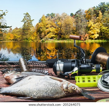 fishing tackle and caught fish on the table autumn day