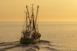 Fishing trawler on the North Sea in evening light, Buesum, Schleswig-Holstein, Germany