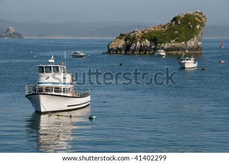 Fishing License on Fishing Trawlers On California Coast  Stock Photo 41402299