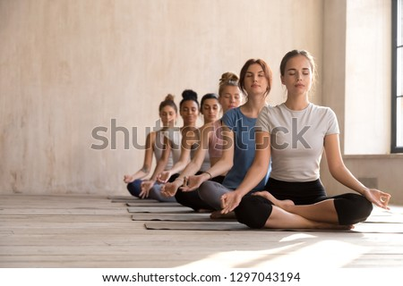 Fit diverse calm yogi sit in row meditating in lotus position in bright fitness studio, toned multiracial women practice yoga with eyes closed on rubber mats, keep mudra hands. Healthy life concept