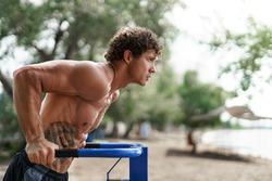 Fit Man Workout Out Arms On Dips Horizontal Bars Training Triceps And Biceps Doing Push Ups. Handsome Man Doing Exercise On Parallel Bars. Male Athlete Exercises On Parallel Bars Outdoor.