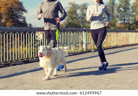 fitness, sport, people and jogging concept - close up of couple with dog running outdoors #612499967