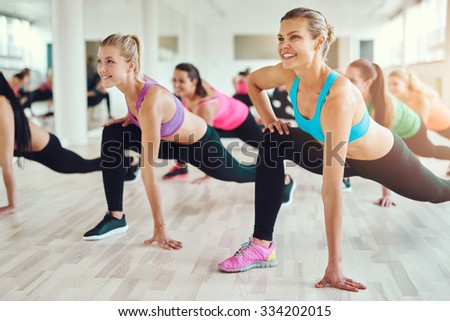 fitness, sport, training, gym and lifestyle concept - group of smiling people exercising in the gym #334202015