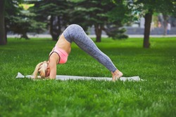 Fitness, woman training yoga in dophin pose outdoors in the park, copy space. Young slim girl makes exercise. Stretching, wellness, calmness, relax, healthy, active lifestyle concept