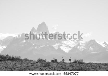 Fitzroy, Patagonia