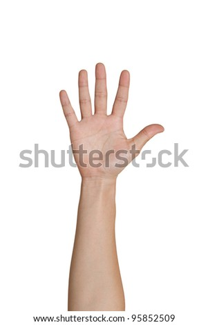Five fingers of female hand