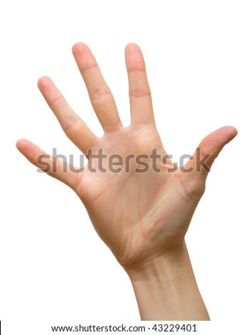 Five fingers of female hand. Isolated. - stock photo