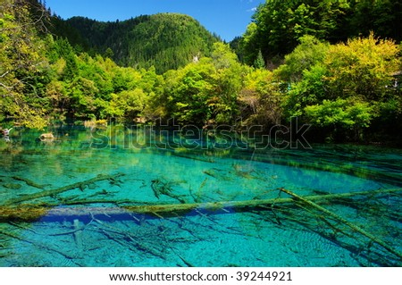 Five Flower Lake, JiuZhaiGou, SiChuan, China