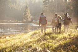 Five friends on a camping trip walking near lake, back view
