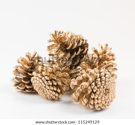 Five golden pines cones on white background