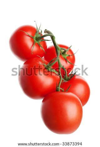Five organically-grown tomatoes on the vine.  Shot on white background.