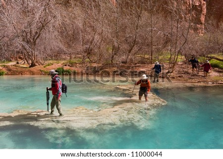 Five people with hiking gear crossing a beautiful river on foot. Havasu Canyon, Arizona. Havasupai Reservation.