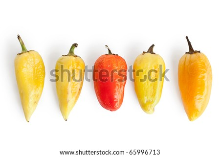 Five pepper with wrinkles isolated on white background, different concepts - one red pepper apple between four yellow