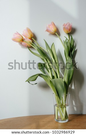 Five pink tulips in glass of water on the table. Concept of hominess