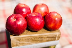 Five red apples on book. Healthy natural fruits on defocused background. Tasty vitamins, dieting nutrition apples