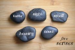 Five senses written on the rock, wooden background