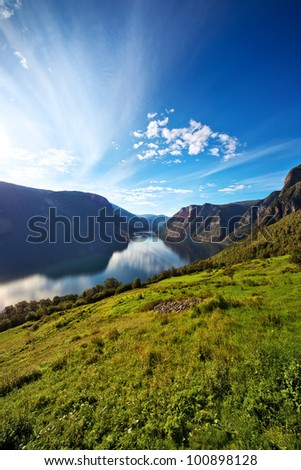 Fjord summer landscape in Norway. Naeroyfjord. - stock photo