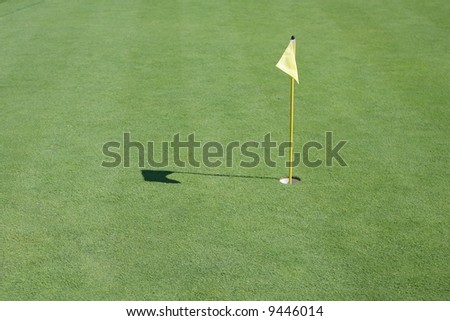 Flag and Pin on Golf Putting Green