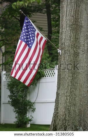 Flag hanging from a tree