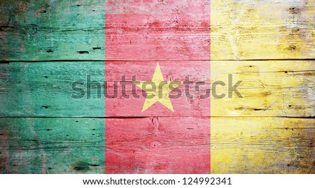Flag of Cameroon painted on grungy wood plank background