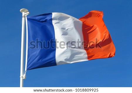 flag of France #1018809925