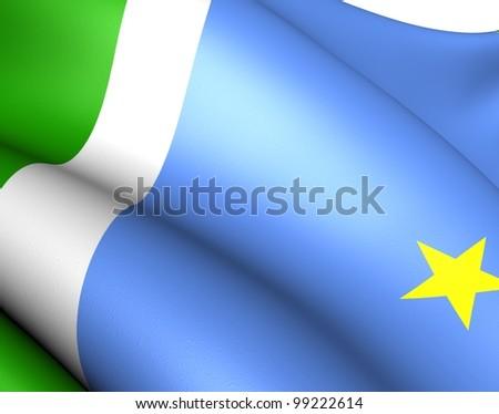 Flag of Mato Grosso do Sul, Brazil. Close Up.