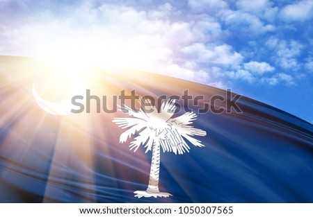 flag of State of South Carolina against the blue sky with sun rays #1050307565