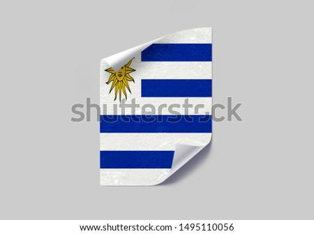 Flag of Uruguay Poster on Wall. Uruguay Flag on Wall. #1495110056