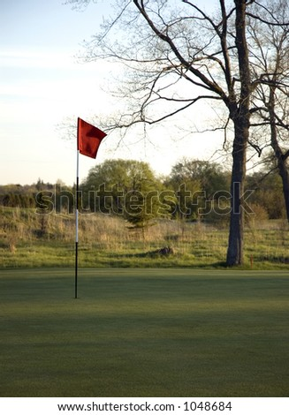 Flag on Golf Green; Want it in or out?