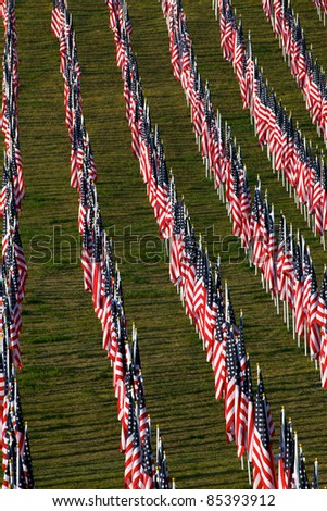 Flags as part of the memorial healing fields for 9/11/2011 in Grand Rapids Michigan. Each flag was designed to represent a person who died in the terrorist attacks on 9/11/2001.