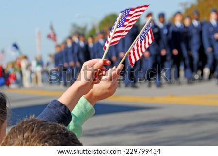 Flags at Veteran's Day Parade #229799434