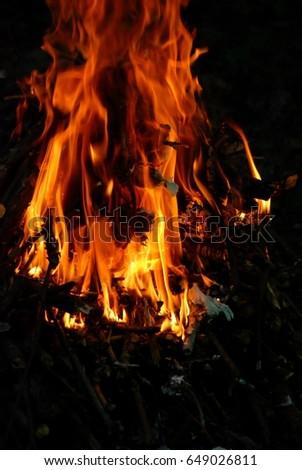 flame #649026811
