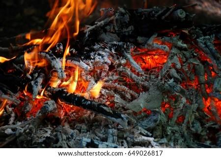 flame #649026817