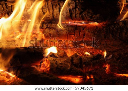 Flame and heat campfire. Fire and coals. - stock photo