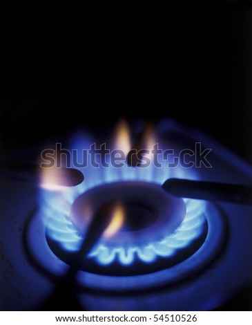 Flame of burner of gas stove