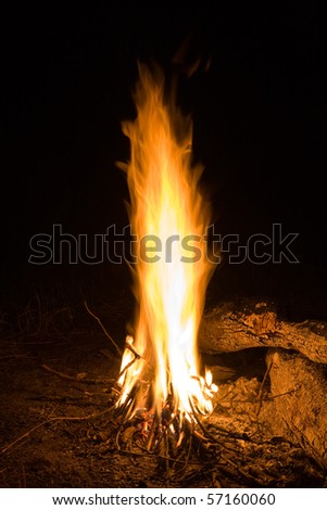 Flame of campfire in night