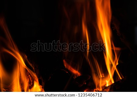 Flame of fire on a black background . #1235406712