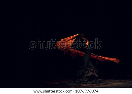 Flamenco. Performance on stage. Foto stock ©