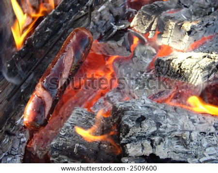 flames and coals in a fire