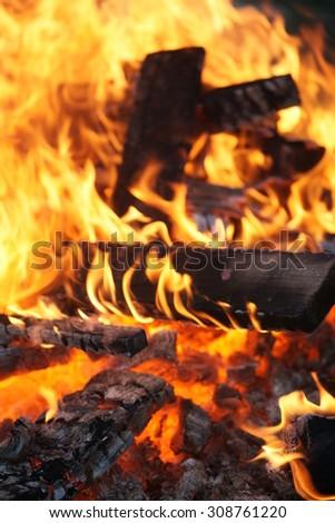 flames close-up #308761220