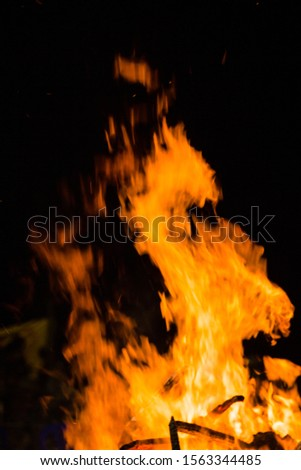 flames from a fire on a black background. picture.