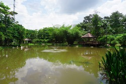 Flamingo Pond with nice Fountain at Wetlands Park Putrajaya, Malaysia