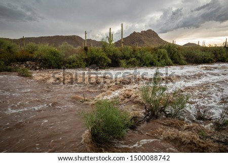Flash flooding on a desert arroyo after a strong Monsoon Season thunderstorm in Organ Pipe Cactus National Monument, Pima County, Arizona, USA Stock photo ©