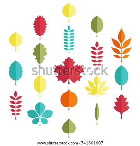 Flat illustration: Silhouettes of tree leaves (elm, beech, ash, linden, birch, alder, aspen, willow, maple,  poplar, rowan, hawthorn, walnut, apple, oak, acacia, chestnut, conker) on white background
